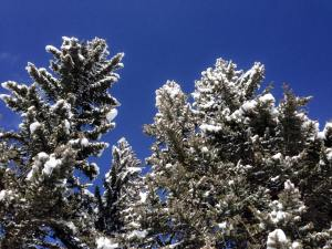 Colorado has the bluest of skies!