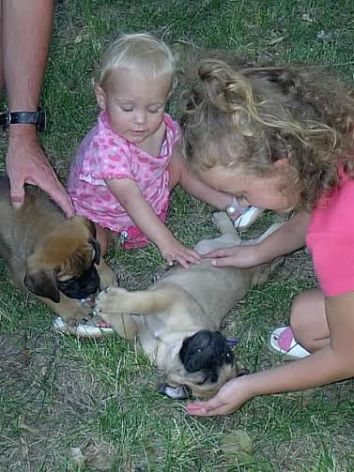Peyton & Riley with Greta the day we brought her home