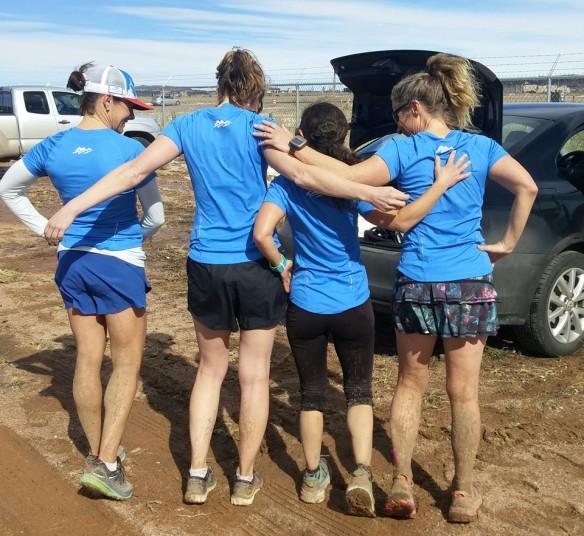 WS3 mud